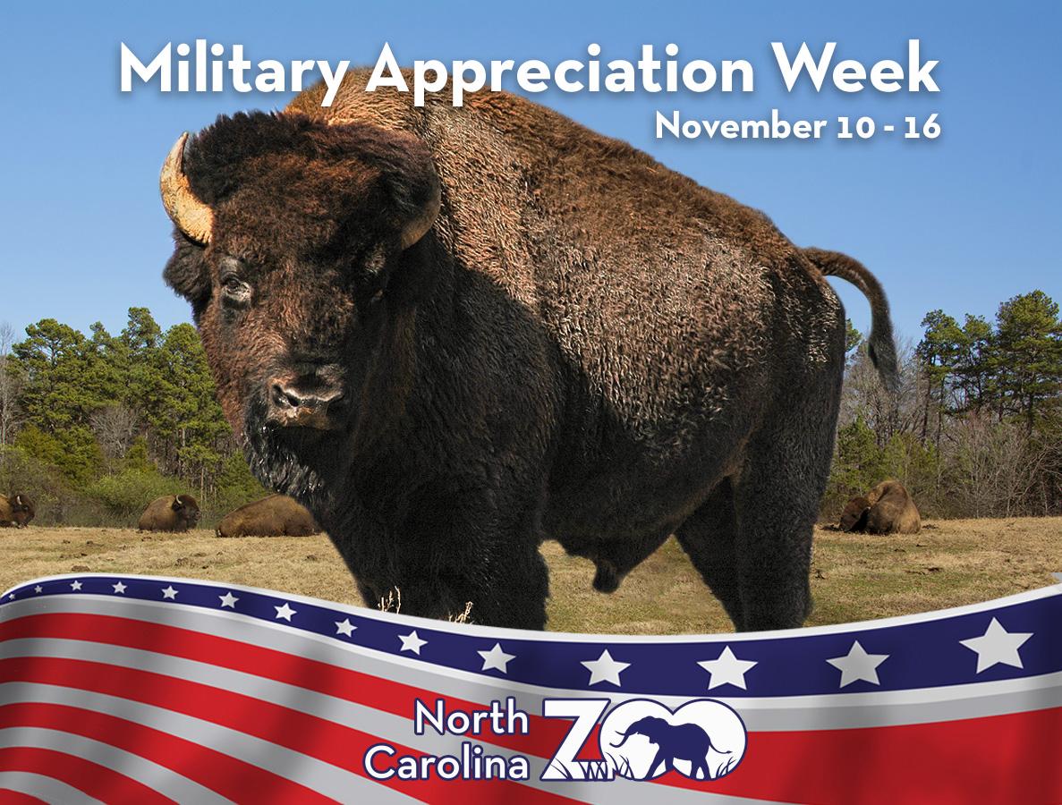 Military Appreciation Week NC Zoo Nov. 10-16, 2018